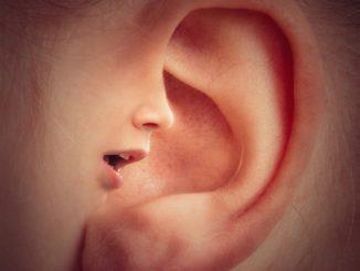 ear-3971050_1920